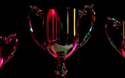 The Joy and Misery of Hunting for Video Game Trophies